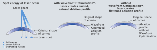 Ablation Profiles
